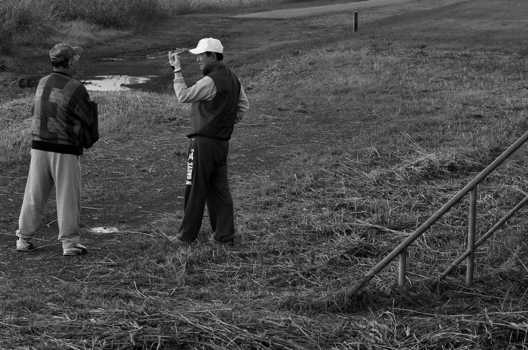 d14 - golfer