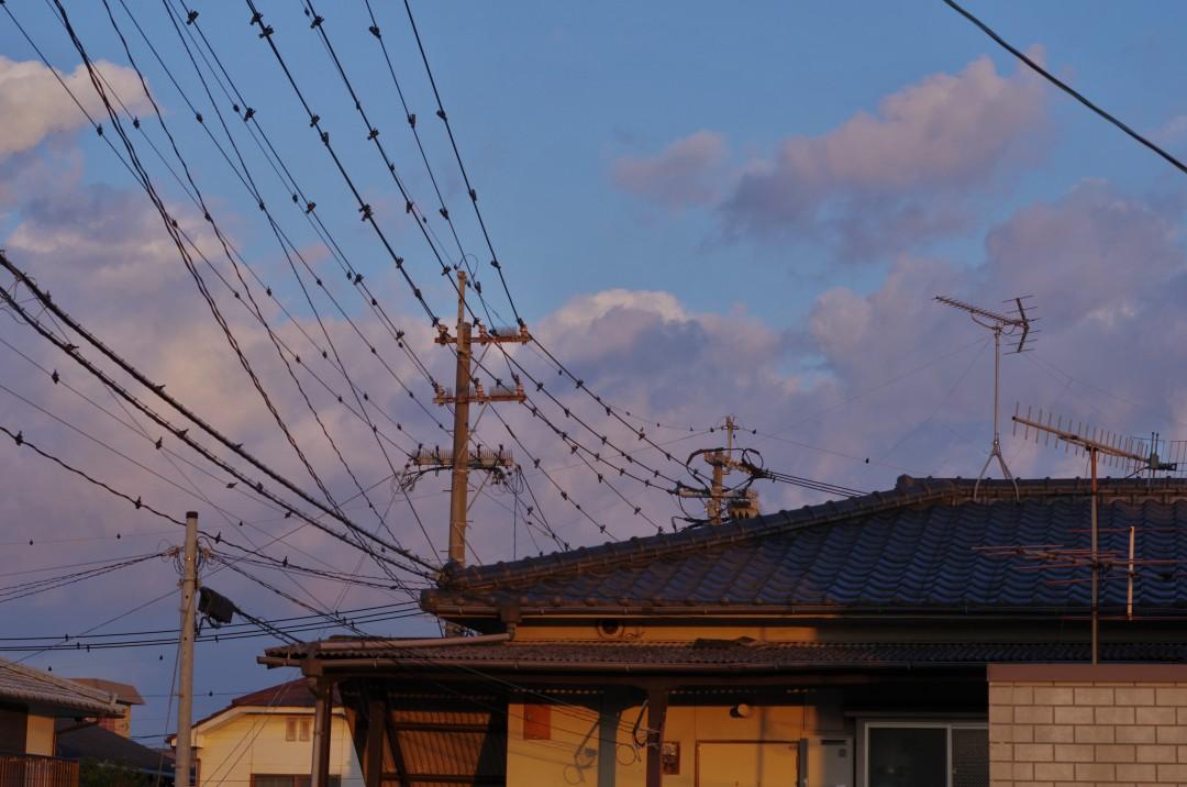 d14 - wires